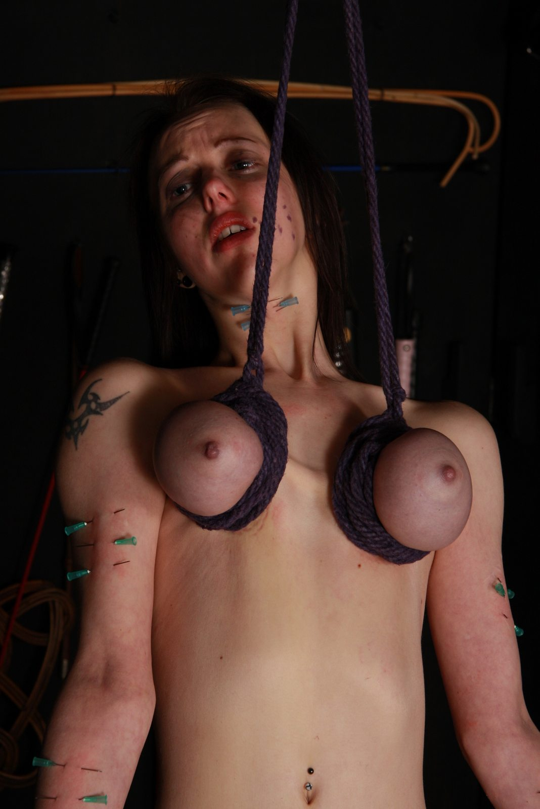 Seems excellent Breast suspension tit hanging bdsm
